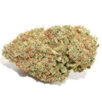 buy ak 47 strain online