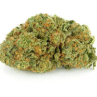 buy cherry pie weed online