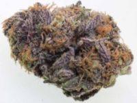 buy grand daddy purple online