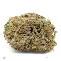 buy god's gift weed strain online