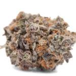 buy blackwater weed strain online