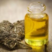 buy amber cannabis oil online