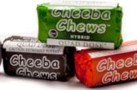 Buy Cheeba Chews Cannabis Edibles Online